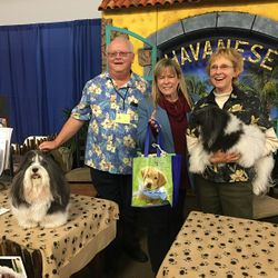 2018 Meet the Breeder Choice Awarded Havanese