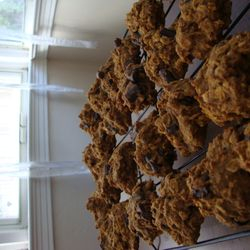 Seasonal Smart Cookies: Oatmeal Pumpkin Walnut