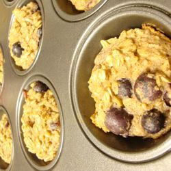 Lactation Boost Oat Muffins for mom, dad, and Ev! Strive for a healthy start each morning!