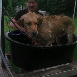 Me bathing one of my own dogs Doobie R.I.P