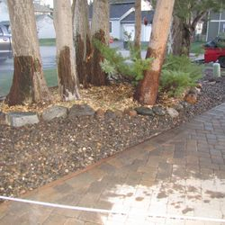 After we cleared out the area of debris and dead branches. Laid gravel down.