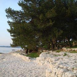 pebbles beach near pines