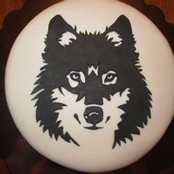 Wolf, zwart-wit - januari 2015