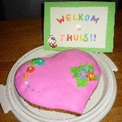Welkom terug van huwelijksreis (mijn eerste zelfgemaakte taart!) - juni 2011
