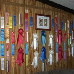 Our Ribbons