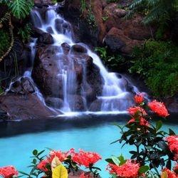 Mystical Falls!
