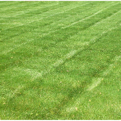Hampshire, IL. Lawn Care Services