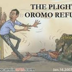 In ALl Africa, Oromo refugees are suffering