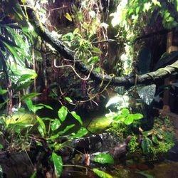 Första dagen för oss blev Aquara på Djurgården