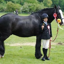 Erin and Columbo at their first show together