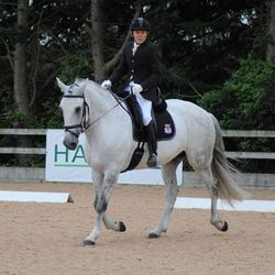 Les and Ben during the dressage