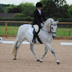 Emma and Nero placed 5th in the dressage at Moores Farm Equestrian Centre