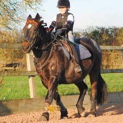 Erin and Arthur as Katniss Everdeen and a Fire Horse