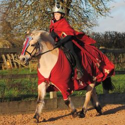 Oliver and Lofn as King Arthur and his horse