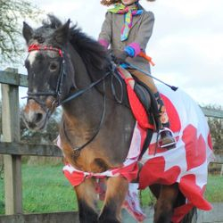2015 Christmas Fancy Dress Runners Up - Poppy and Bronty as The Mad Hatter and The Queen of Hearts