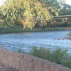 Animas River, NM.  June 2013.