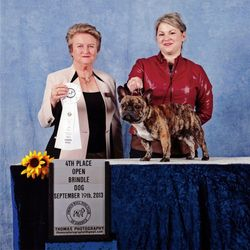 Jax and I winning 4th in Open brindle at the 2013 National Specialty