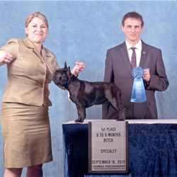 Uma winning the 6 - 9 class under renowned breed Philip Stemp from England