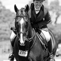 National Show Hunter Horse, Poetry in Motion, & Equistyle Quality Stocks