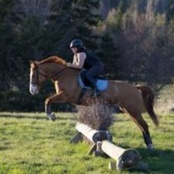 Amber clearing jump.
