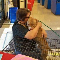 A happy adoption