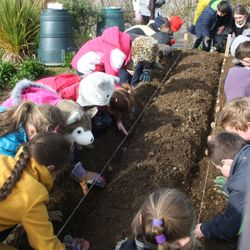 Busy at work in our school garden