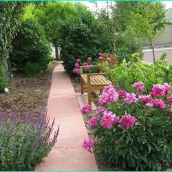 John and Ruth Van Auken donated the concrete path and curb. The were the Garden's first contributors.
