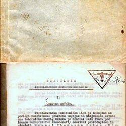 Pravilnik Jugoslovanske gozdovniške lige