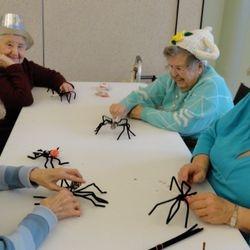 Spider Pops!