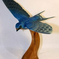 Barn Swallow by Michael Galovic