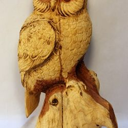 Owl by John Nieburg
