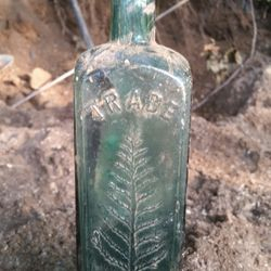 Wistar pine tar cordial (The wall dump find)
