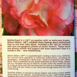 Back of book written by Allison Gilbert, LMFT