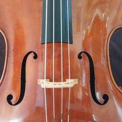 N07 - Alex Tzankow -  Custom Violins