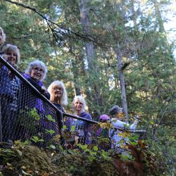 Sole Sisters Walking Group at Little Qualicum Falls for the 2017 Active Aging Week.