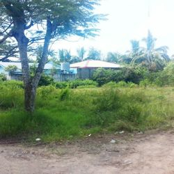 Batangas City vacant lots for sale