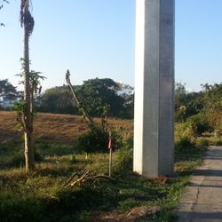 View of 3 hectare raw land along Batangas City Diversion Road