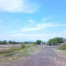 Flat Terrain of the Lemery Batangas Industrial raw land for port development.