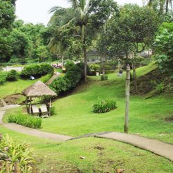 Camp site of Liesure Farms, Lemery, Batangas