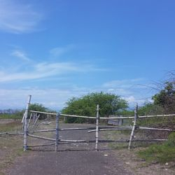 Flat and elevated terrain of Lemery Batangas Port lot for sale.  This is in the industrial zone of Lemery & Calaca, Batangas
