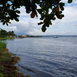 View of the lake shoreline along Taal Lake, in Talisay Batangas.