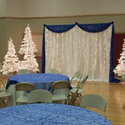 Fabric Panel backdrop with lights and white pine trees.