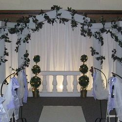 Roman Columns main backdrop (grapevine garland) - added fabric backing and up lights