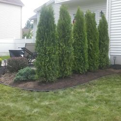 Landscape Addition in Amherst NY