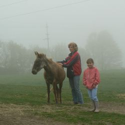 Reiki has helped Finnegan the mule regain confidence after arriving at the sanctuary.