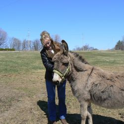 Miranda Donkey is very friendly and will always show you where to put your Reiki hands