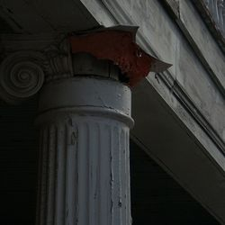 Deteriorated Capital-Back Porch