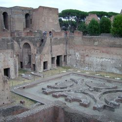 Colosseum & City Walk Tour - the Palatine Hill