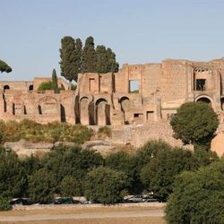 Colosseum Tour - the Palatine hill