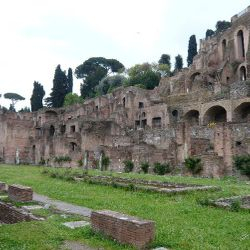 Colosseum & Walking Tour - the Palatine hill
